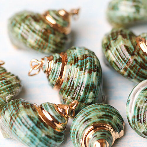 Mixed Dyed Shell Beads Jewellery Beads Craft Beach Craft DIY Pendant Charms