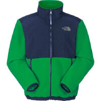 The North Face Boys Triumph Green Navy Blue Denali Fleece Jacket Coat Xs S Or M
