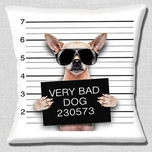 Drole-Fauve-Chihuahua-Bad-Chien-Aligner-Photo-Imprime-40-6cmx40-6cm-40cm-Coussin