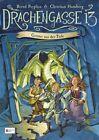 Drachengasse 13, Band 02 von Bernd Perplies und Christian Humberg (2011, Gebundene Ausgabe)