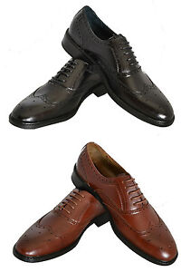 Delli Aldo Classic Wing Tip Black and Brown Colors.