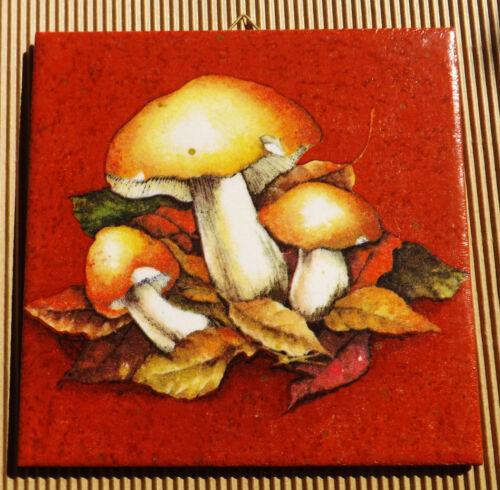 Dekofliese Geburtstag Danke Mitbringsel Geschenkidee Herbst Pilze 054