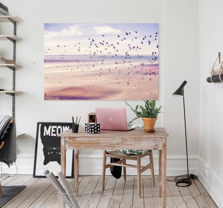 3D Strand Vögel 63 Fototapeten Wandbild  BildTapete Familie AJSTORE DE