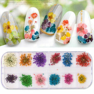 Real-Dried-Flowers-3D-Nail-Art-Decor-Design-DIY-Tips-Manicure-12-Colors-Fashion