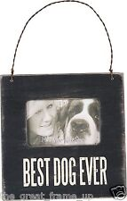 """Primitives By Kathy Small Wood Photo Frame """"Best Dog Ever"""" Holds 2""""x 3"""" Photo"""