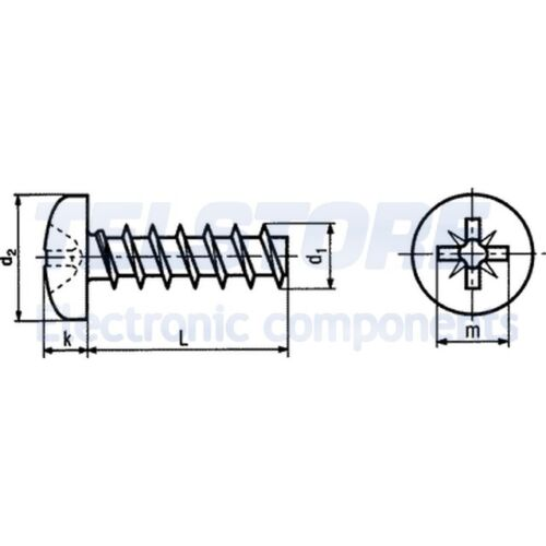 100pcs  Vite per plastica 3,5x12 Testa cilindrica Pozidriv acciaio TELSTORE