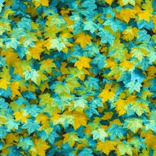 Timeless Treasures Electric Nature C6184 Multi Packed Leaves  COTTON FABRIC