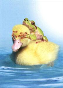duck duck frog tree free greetings funny humorous birthday card