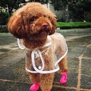Haustier Hund Regenmantel Transparent Jacke Wasserdichte Kapuzenkleidung