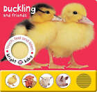 Touch, Feel and Listen - Duckling and Friends by Priddy Books (Board book, 2005)