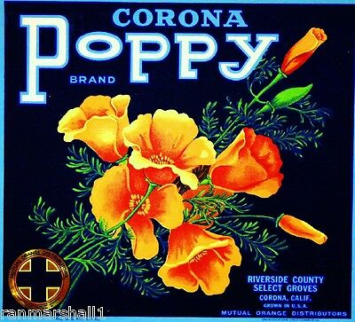 Corona Riverside County Poppy California Orange Citrus Fruit Crate Label Print