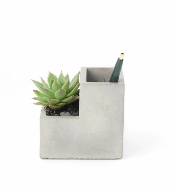 Kikkerland Concrete Desktop Planter (PL02-S)