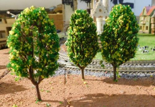 60 mm hoch 20 gelb blühende Büsche