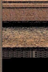 Hooman-Dawn-of-Civilization-Hardback-or-Cased-Book