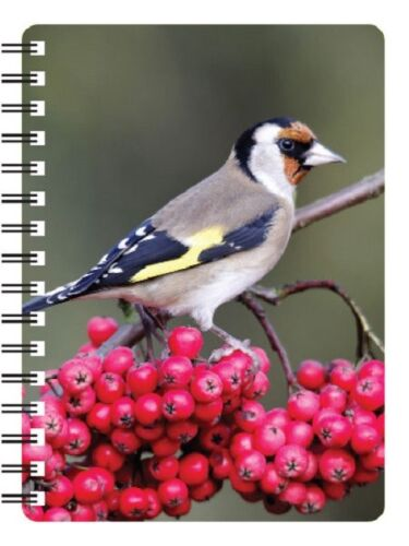 Ideal Christmas stocking filler Gold Finch 3D Notebook