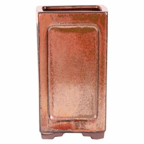 Bonsai-pleureurs Bol 8 x 8 x 14 cm cuivre couleurs 50013