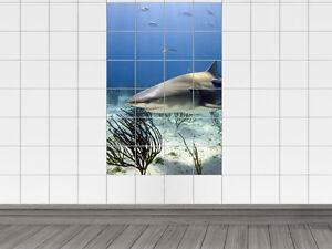 Fliesenaufkleber fliesenbild tiere unterwasser wei er hai - Fliesenaufkleber fische ...