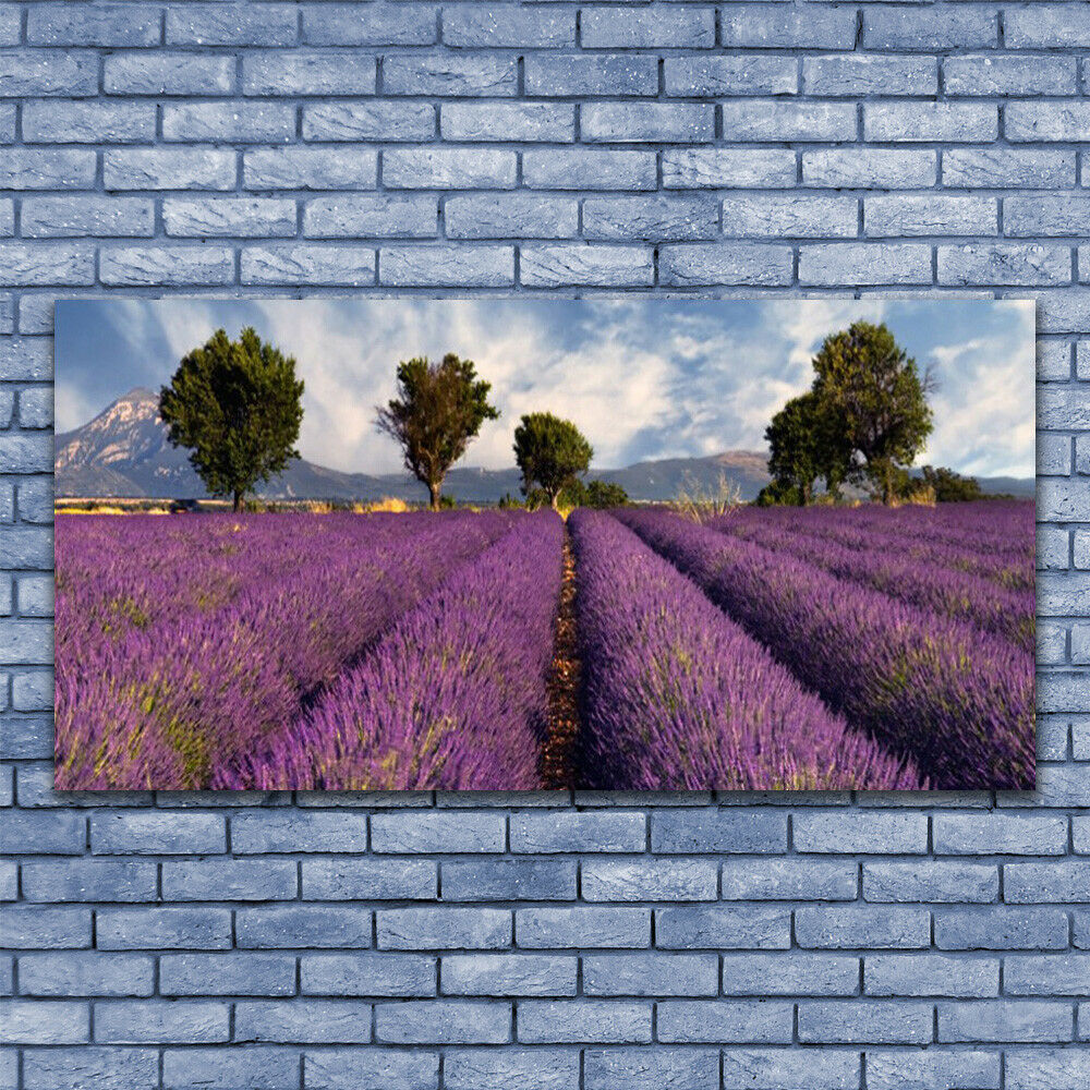 Print on Glass Wall art 140x70 Picture Image Meadow Trees Nature