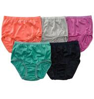 10 Pack - Comfort Choice Women Plus Size Silky Nylon Full Brief Panties Knickers