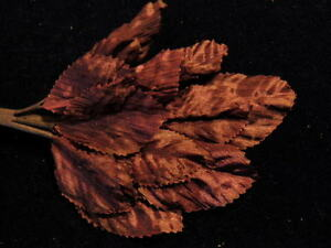 Millinery-Flower-Leaf-Silky-Crepe-for-Hat-Wedding-or-Hair-Burgundy-Plum-Y216