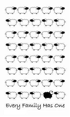 "/""Sheep/"" Cotton Tea Towel Australian Design /""Every Family Has One/"""
