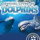 Social Lives of Dolphins by Sue Laneve (Paperback / softback, 2016)
