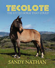 Tecolote: The Little Horse That Could by Sandy Nathan (Paperback / softback, 2011)