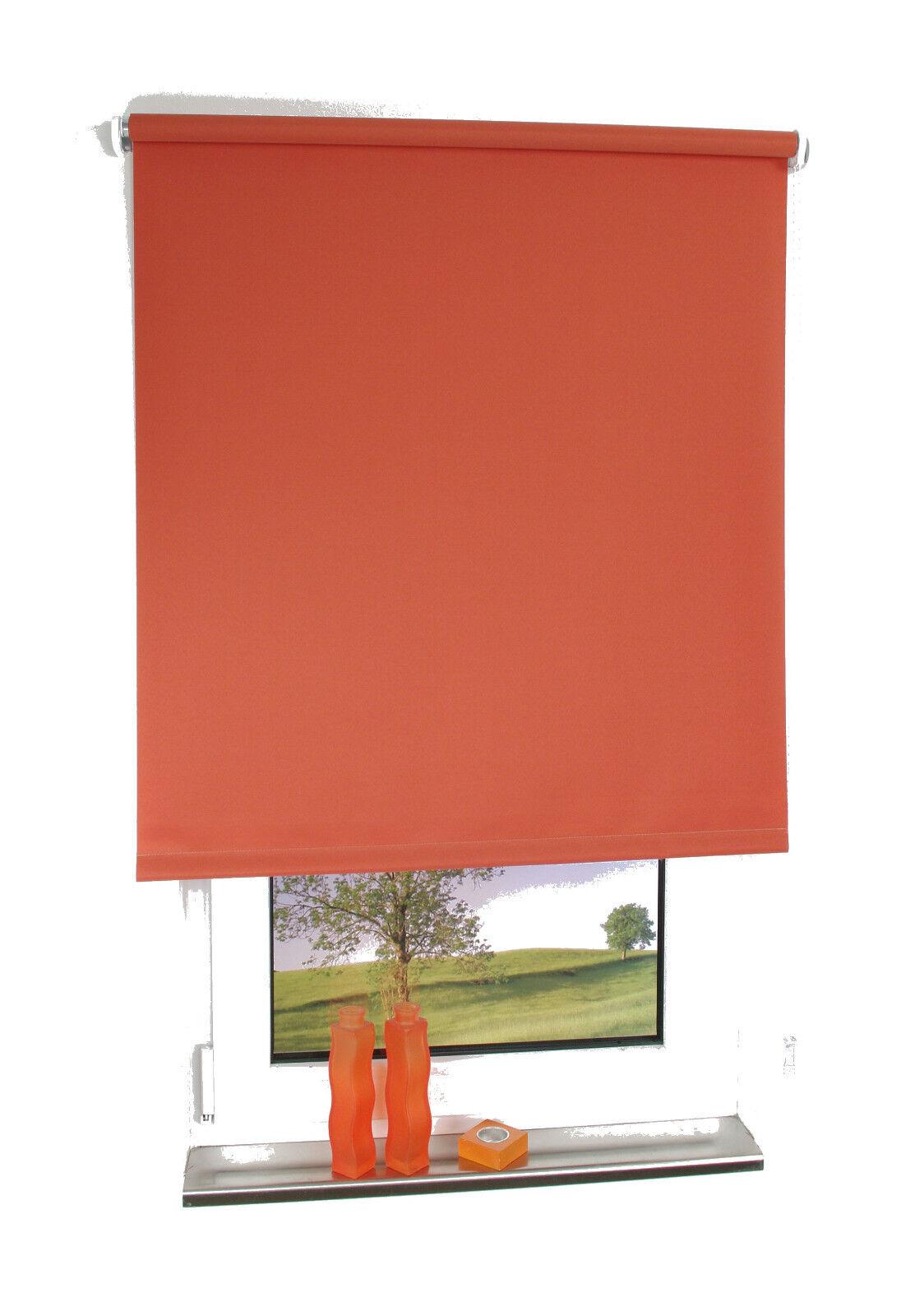 Kettenzugrollo Terracotta Seitenzugrollo Tür Fensterrollo Sichtschutz Sichtschutz Sichtschutz Dekoration | Professionelles Design  c4686e