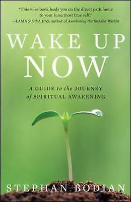 Wake up Now : A Guide to the Journey of Spiritual Awakening by Stephan Bodian 7