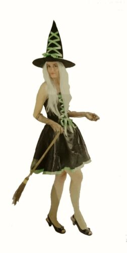Ladies Witch fancy dress costume Green HAT GLOVES Womens Halloween Outfit