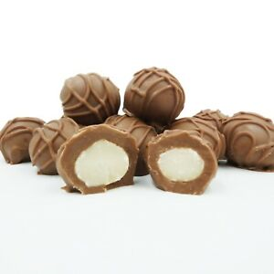 Philadelphia-Candies-Macadamia-Nuts-Milk-Chocolate-Covered-1-Pound-Gift-Box
