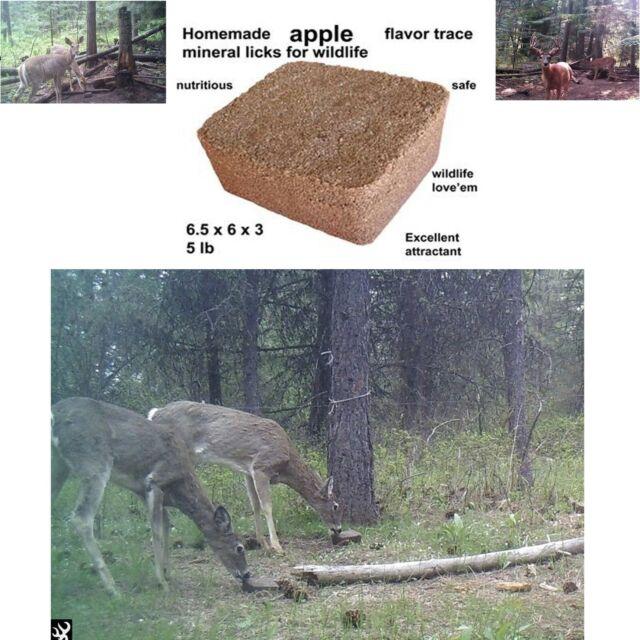 Apple Flavored 25lbs Deer Attractant