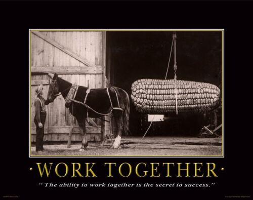 Farming Motivational Poster Art Print Giant Sweet Corn Seeds Advertising MVP75