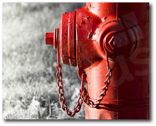 Red Fire Hydrant Black and White Background Canvas Art Poster Print Wall Decor