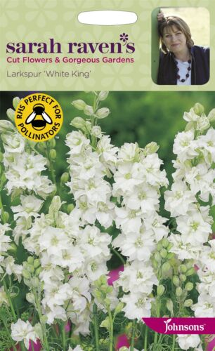 Larkspur White King 400 Seeds Sarah Raven/'s Cut Flowers Johnsons