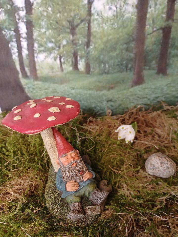 Gnomes, Nisser, Rien Poortvliet