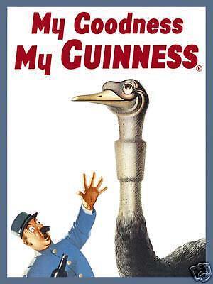 Guinness Ostrich steel fridge magnet sg REDUCED!