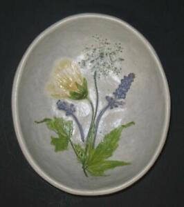 Salt Marsh Pottery Wall Hanging bowl Salva & Flowering Maple 1992 signed stamped