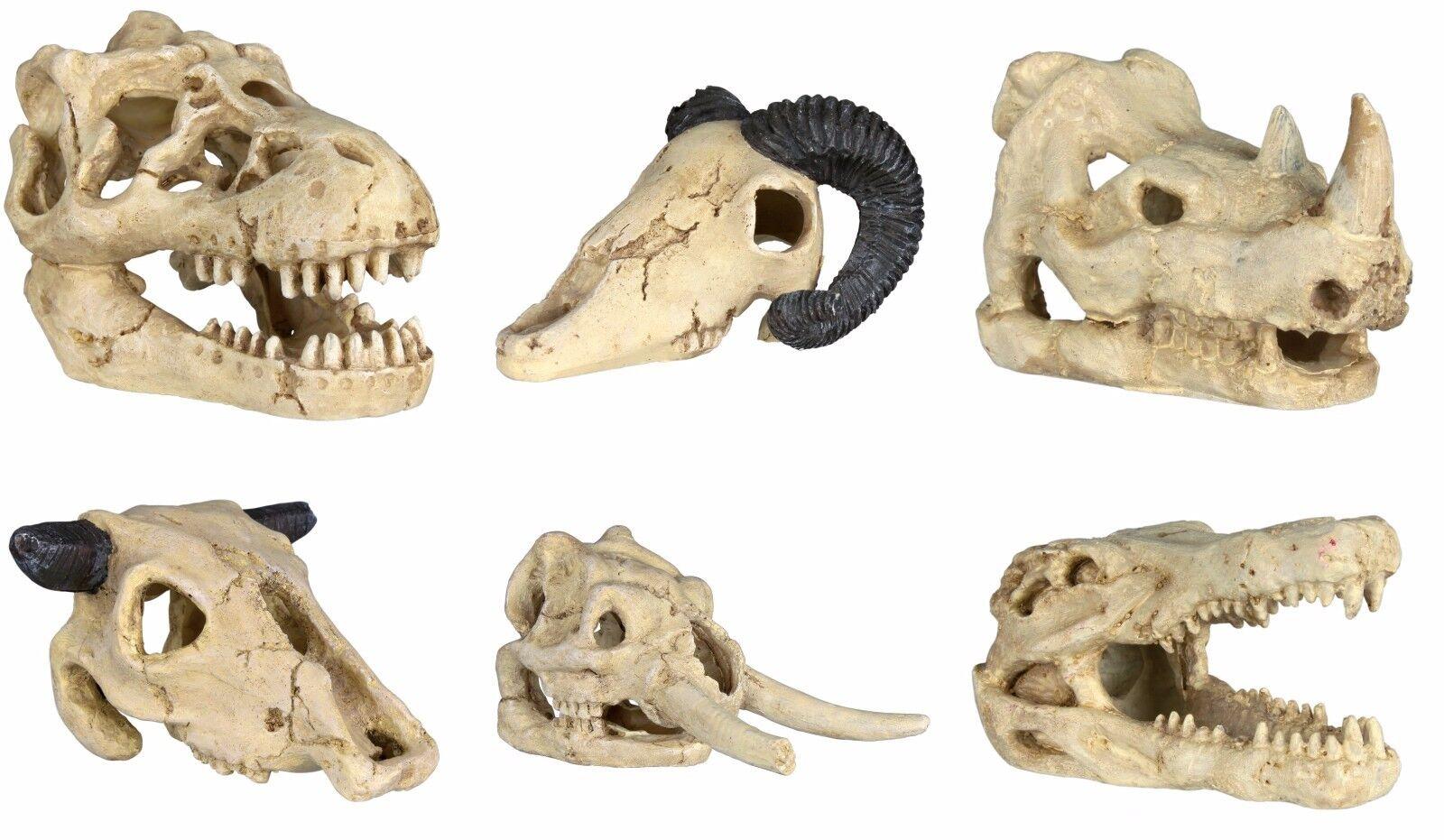 6 Pcs Skull Fossil Decor Ornament Decoration for Fish Tank Aquarium by TRIXIE