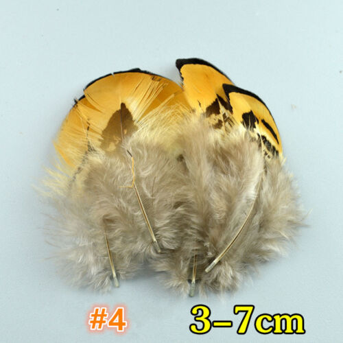 24 Styles Natural Pheasant Feathers Pheasant Plume Millinery Hats Costume 50 pcs