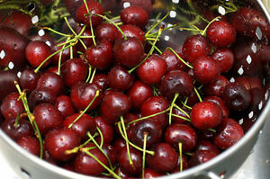 10-FRESH-Sweet-Cherry-Prunus-Avium-Seeds-Edible-Delicious-Fruit