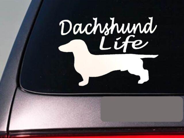 B1095 Doxie Nation Dachshund DOG DECAL STICKER for CAR TRUCK SUV LAPTOP Weiner