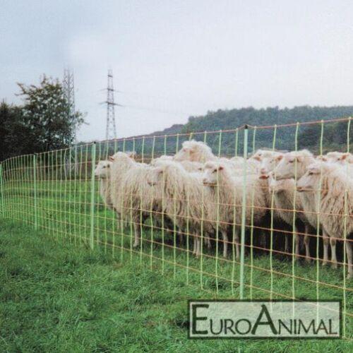 50m Euronetz Schafnetz Kombi Vertikalstreben Schafzaun Elektrozaun Schafe Pferch
