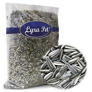 25 kg Sonnenblumenkerne 25000 g gestreift Vogelfutter Ernte 2020 Vögel Lyra Pet®