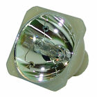 Lutema Projector Lamp Replacement for Mitsubishi SD430U