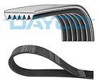 Dayco 6PK1865 V-Ribbed Belts
