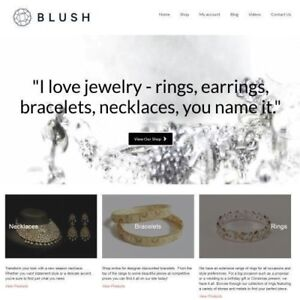 JEWELRY-PRODUCTS-Website-Business-Make-1-442-24-A-Sale-INSTANT-TRAFFIC-SYSTEM