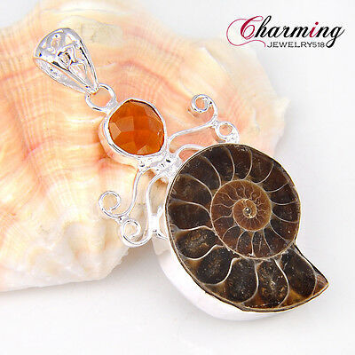 8Amazing Natural Ammonite Fossil Brazil Citrine Gemstone Silver Necklace Pendant