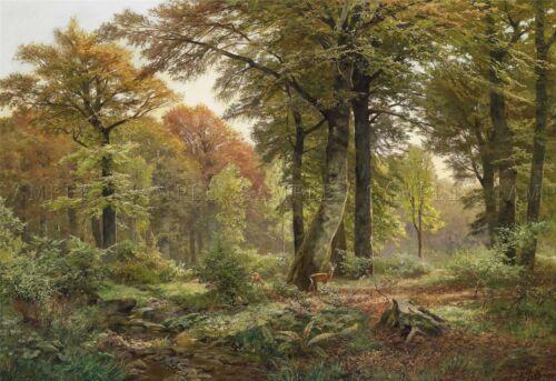 PAINTING LANDSCAPE ARBOREAL BOHMER FOREST CLEARING DEER LARGE ART PRINT LF956