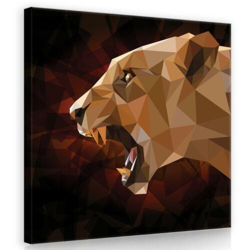 Wandbild  Leinwandbild Kunstdruck 141072FW Löwe 3D und Geometrie Tiere Fauna